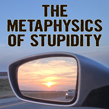 MetaStupid